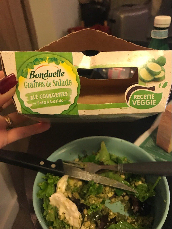 Graines de salade - Product