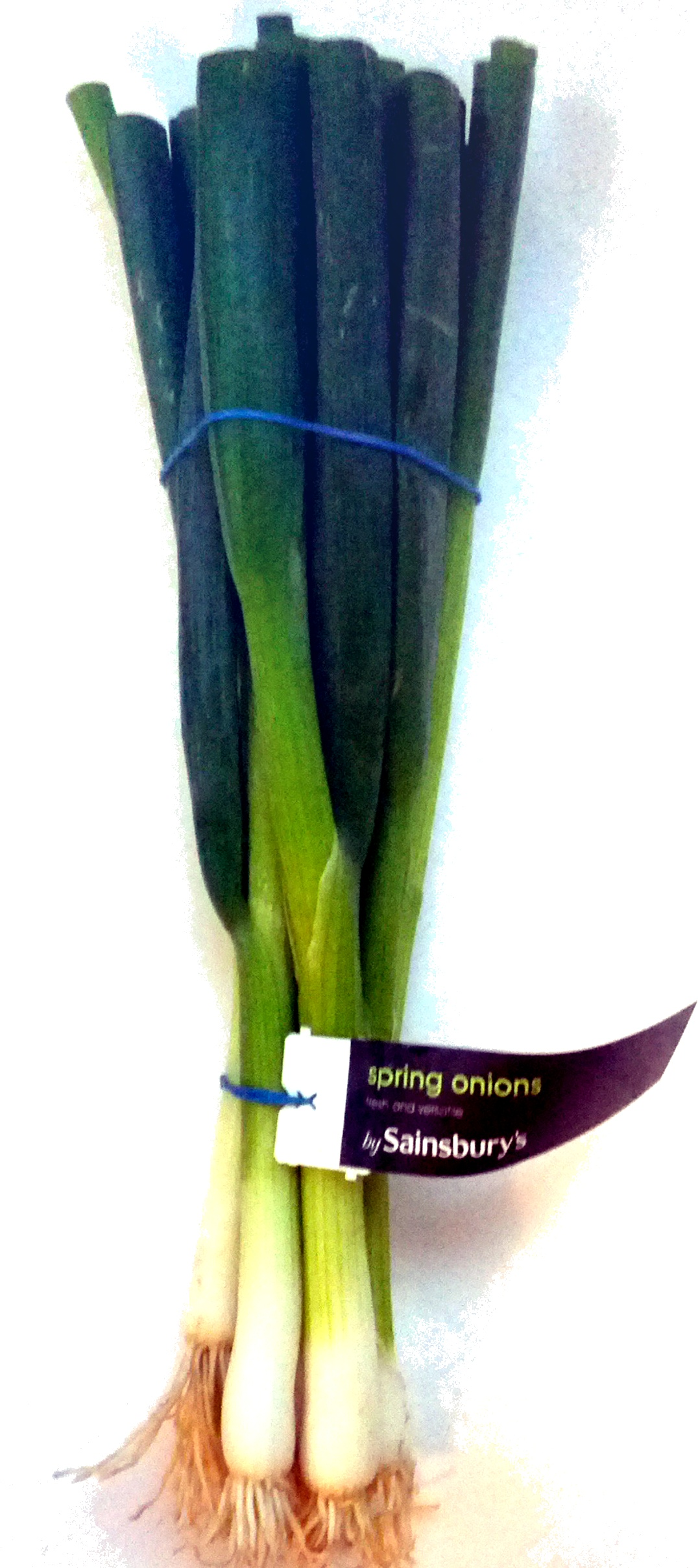 Spring Onions - Product