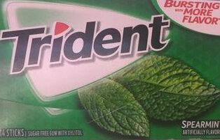 Gum spearmint sugar free1x14 pc - Product - en