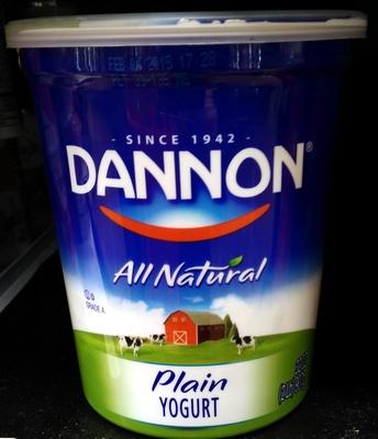 All Natural Plain Yogurt - Product