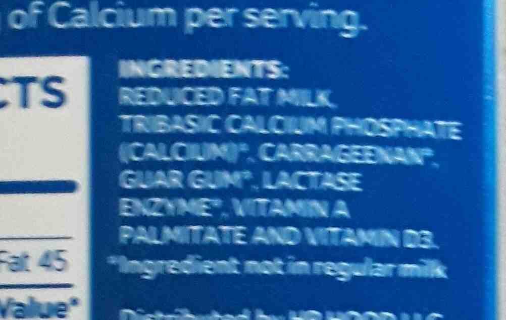 lactaid - Ingredients