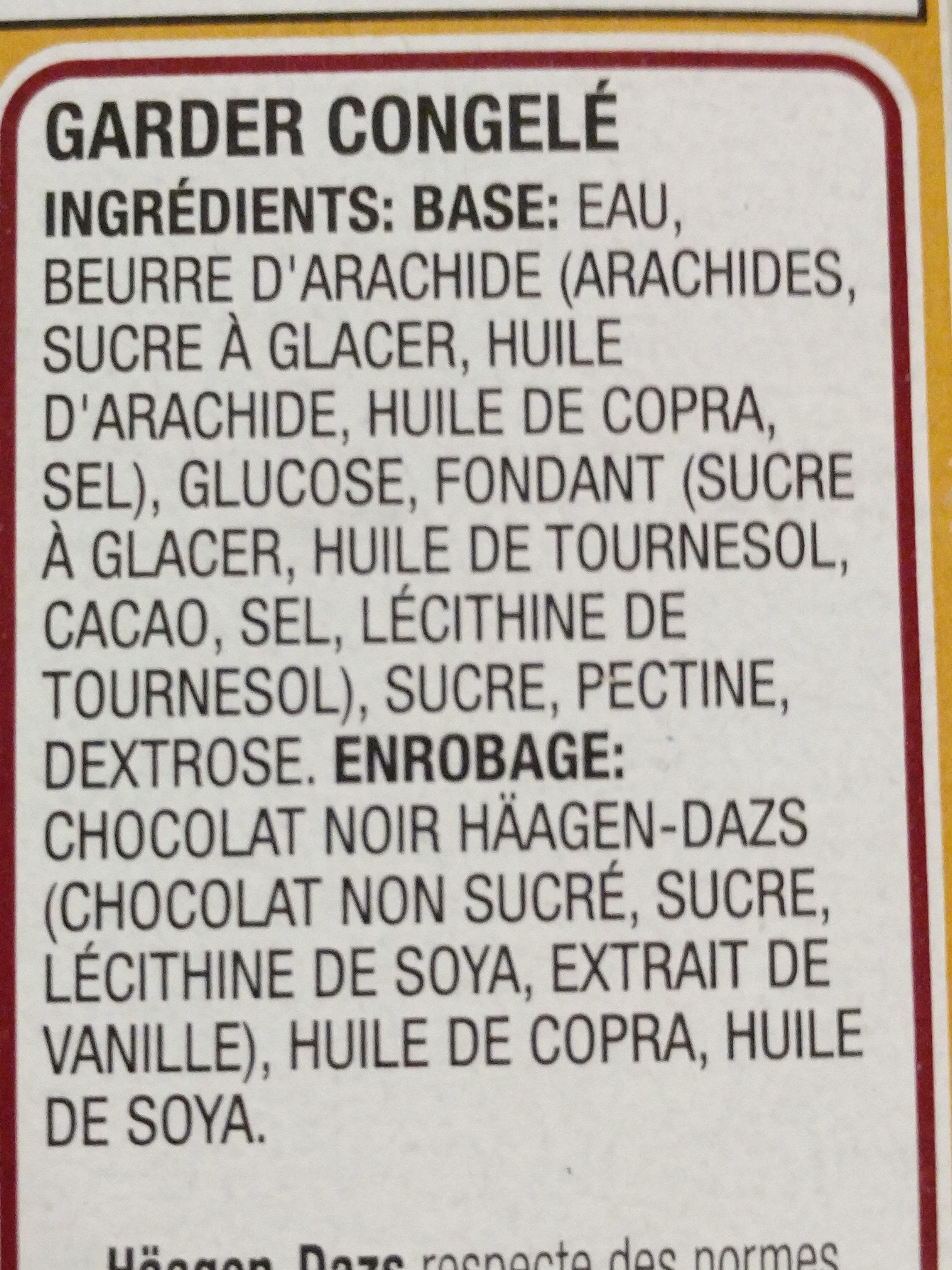 Haagen Dazs sans produits laitiers beurre d'arachide chocolat noir - Ingredients