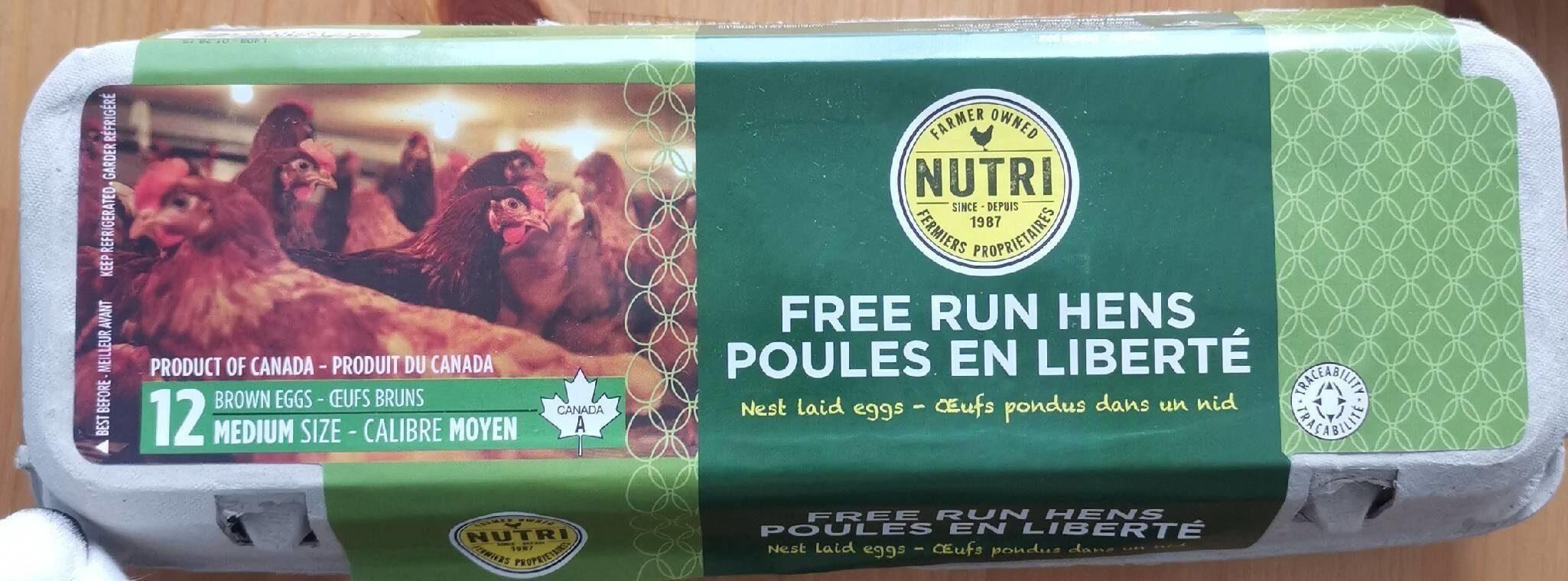 Poules en liberté - Product - fr