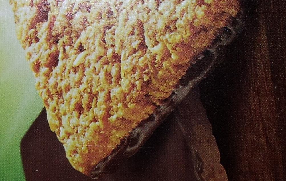 Granola Thins - Ingrediënten