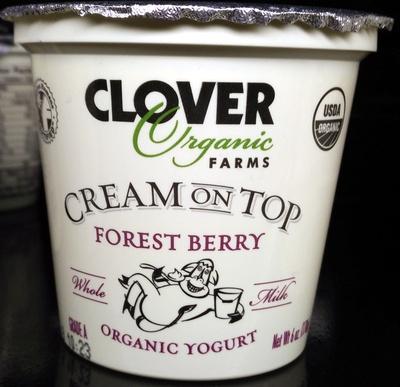 Cream on Top Forest Berry Organic Yogurt - Product