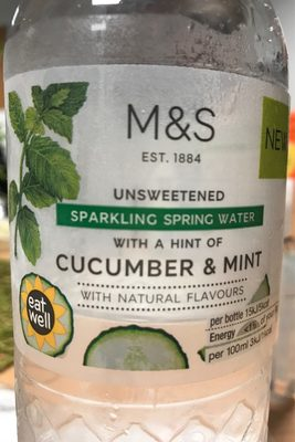 Unsweetened Sparkling Spring Water Cucumber & Mint - Product