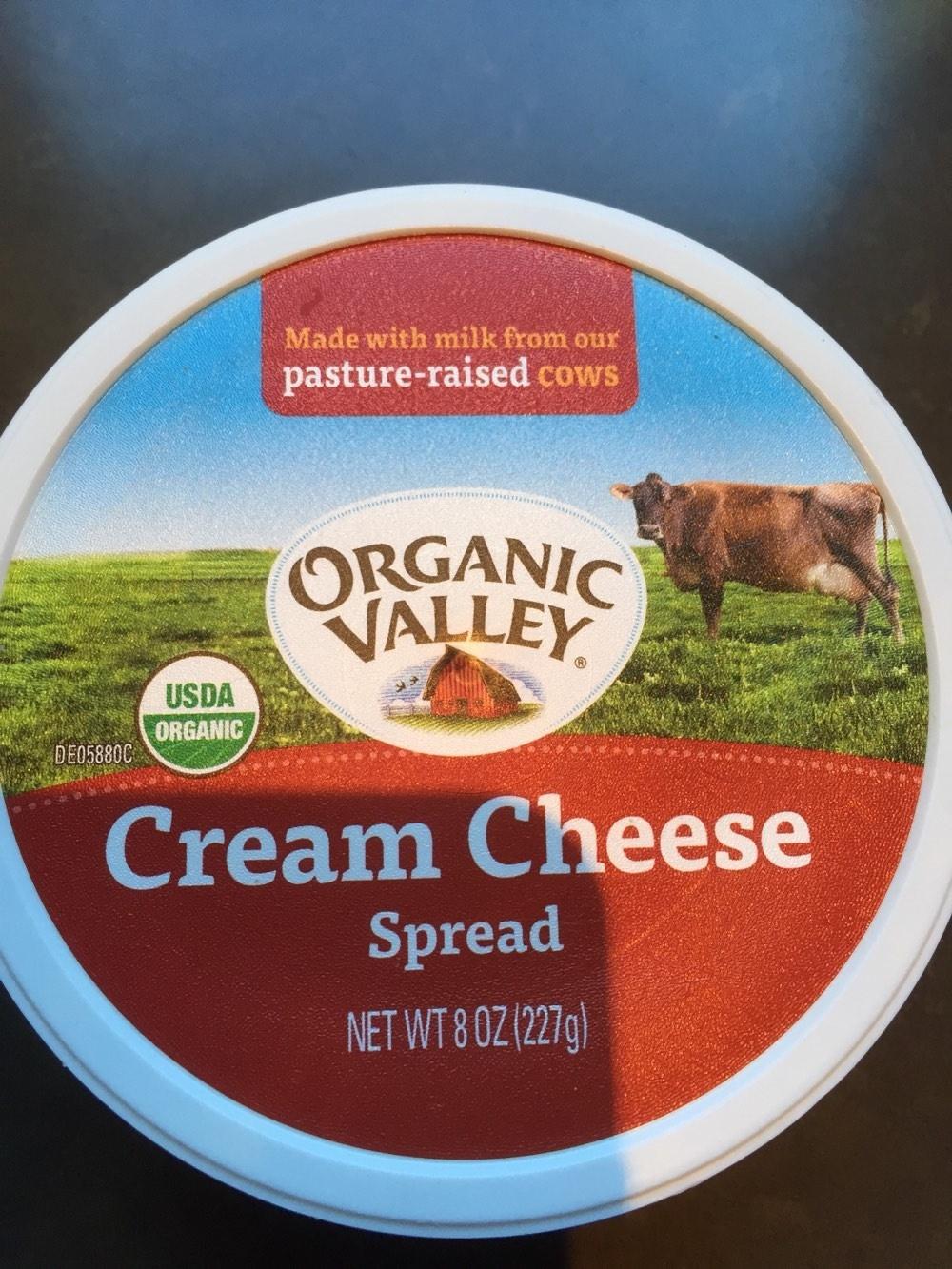 Cream Cheese Spread - Product