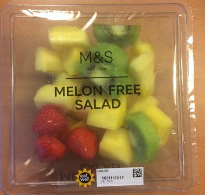 Melon Free Salad - Product