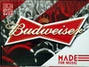 20 bottles Budweiser - Product