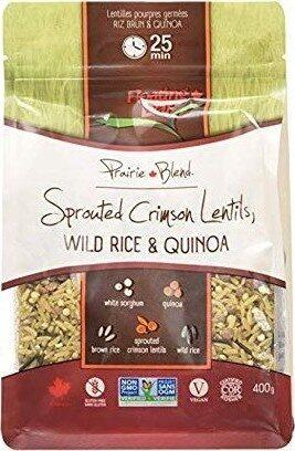Sprouted crimson lentils - Product - en
