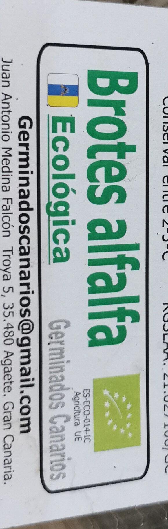 Brotes de alfalfa - Ingredients - es