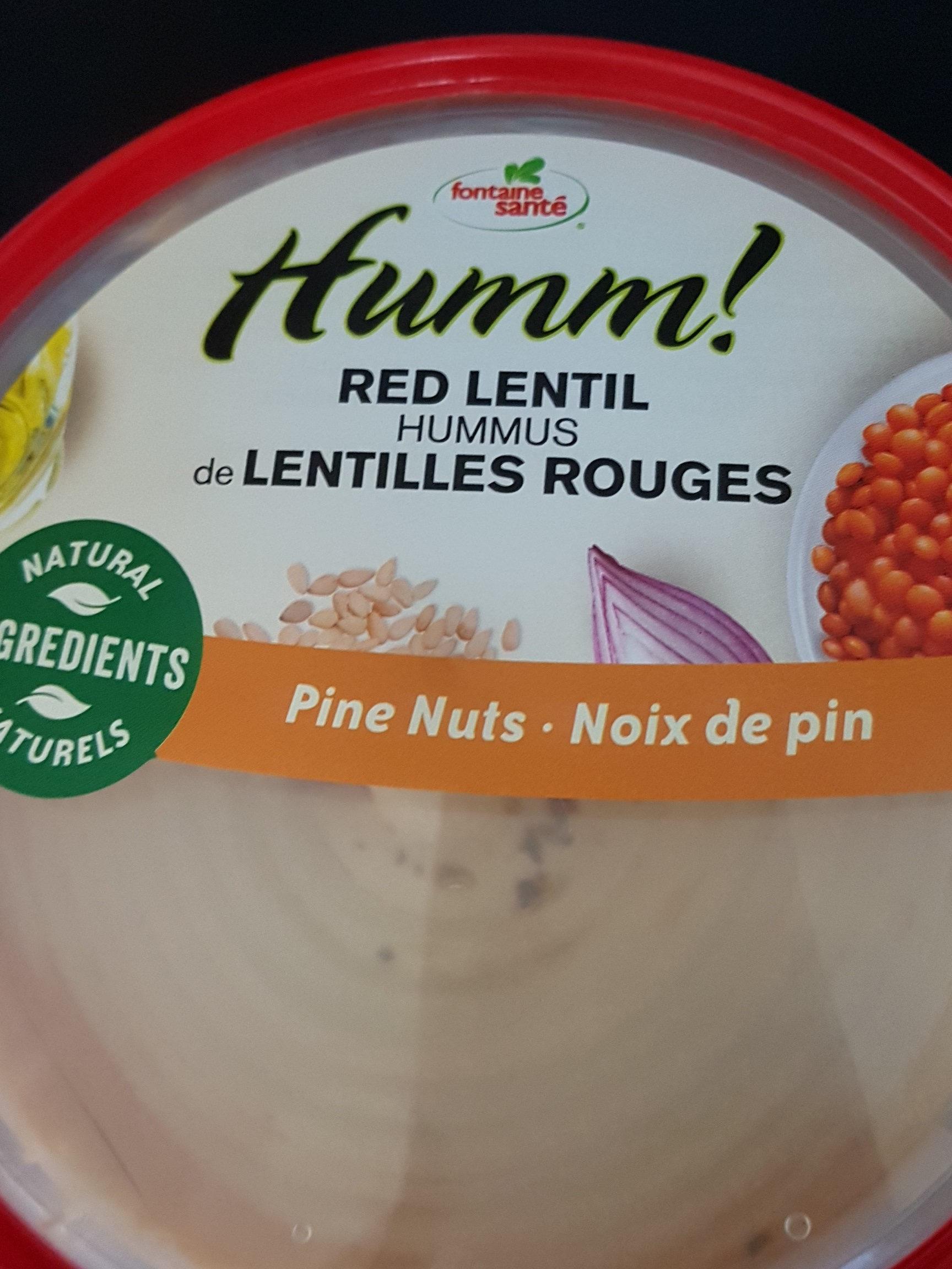hummus de lentilles rouges - Product - fr
