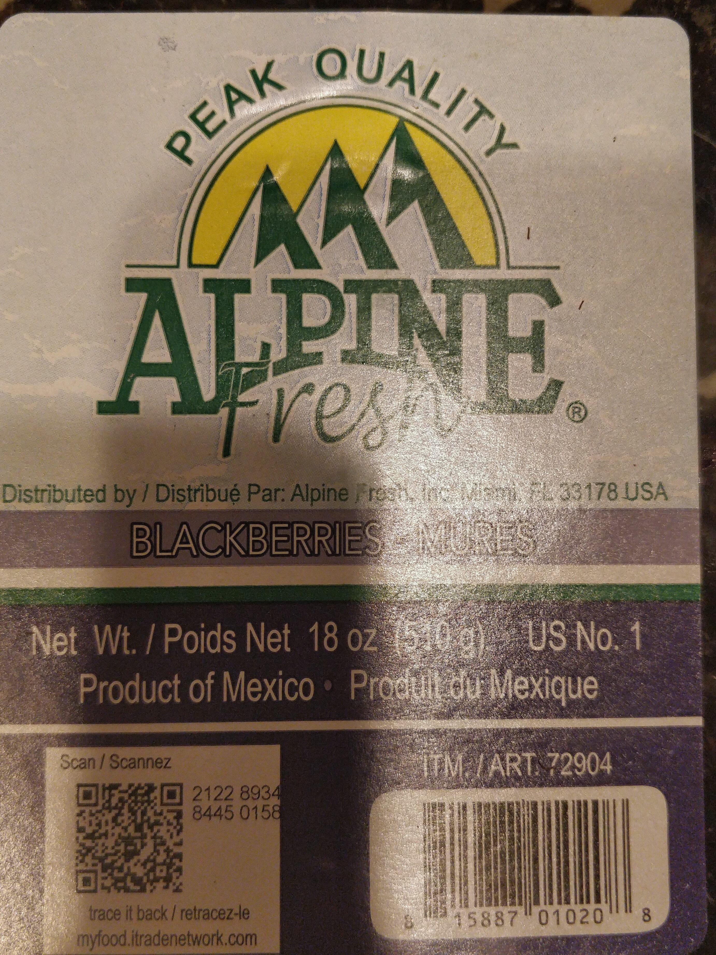 Alpine Fresh Blackberries - Product