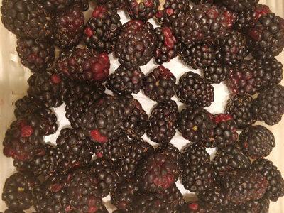 Alpine Fresh Blackberries - Ingredients