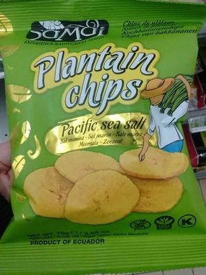 Plantain Chips Pacific sea salt - Produit