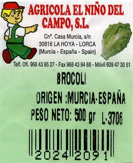 Brócoli - Ingredientes - es