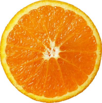 Rodaja enteras  limon y naranja posteriormente son congeladas - Producto