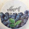 Myrtille - Product
