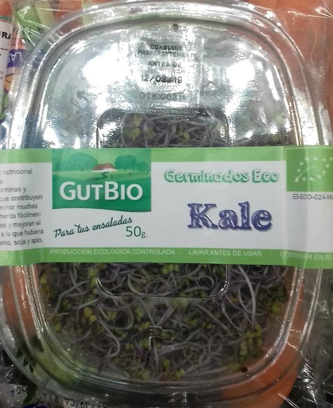 Germinados Eco Kale - Producto - es