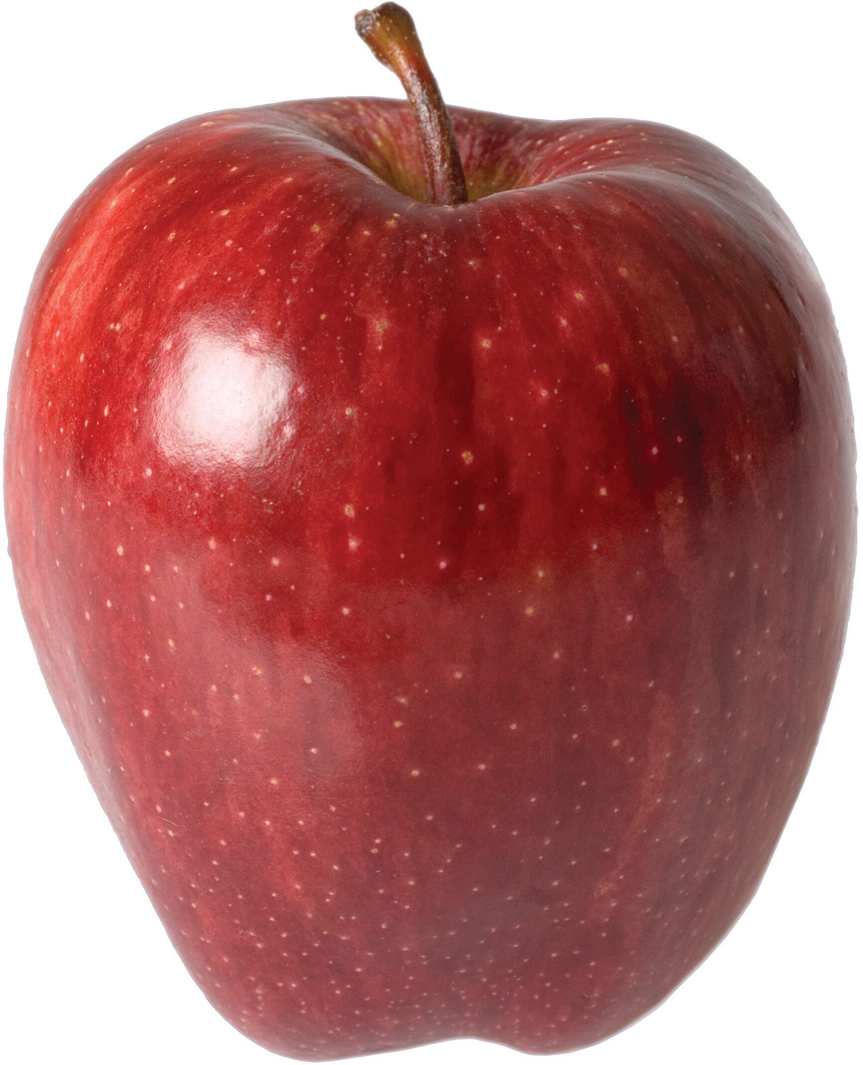 Apple - Product