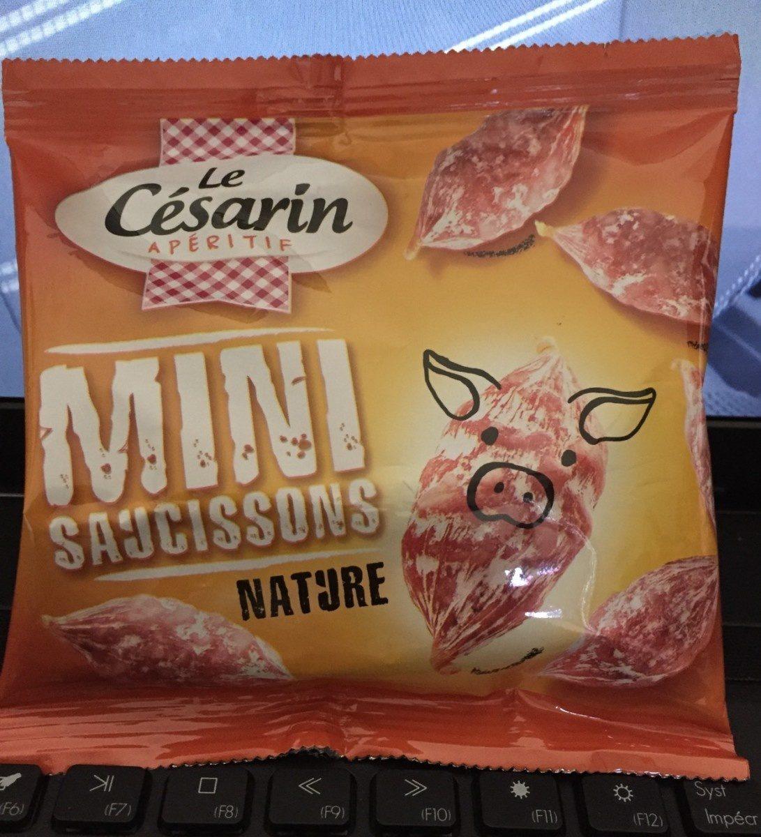 Mini saucissons nature (porc) - Product - fr