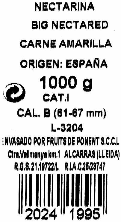 Nectarina - Ingredientes - es