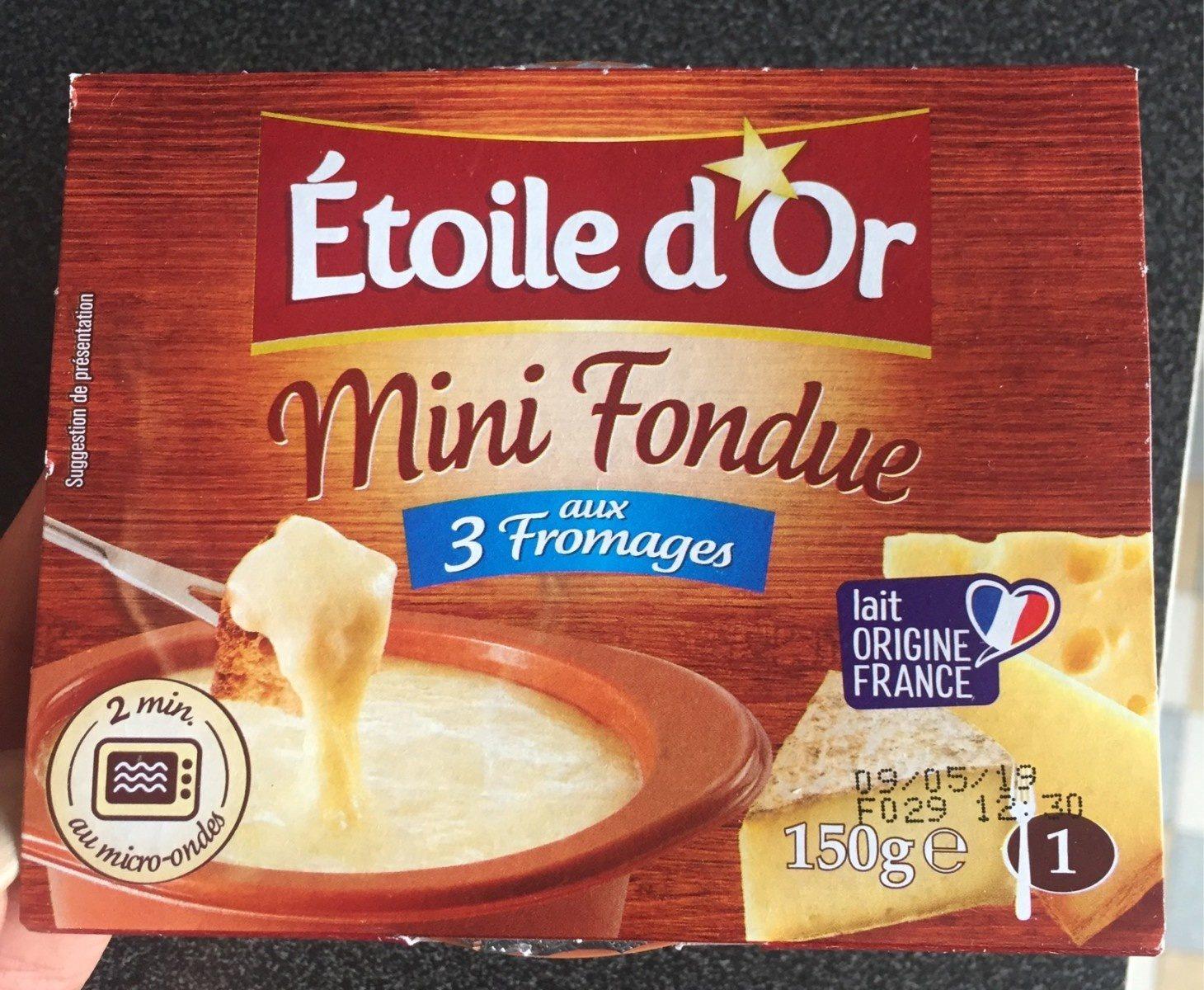 Petite Fondue - Produit - fr