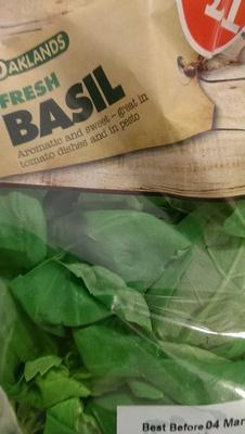 fresh basil - Product