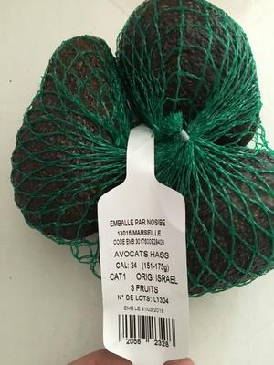 Avocats Hass - Produit - fr