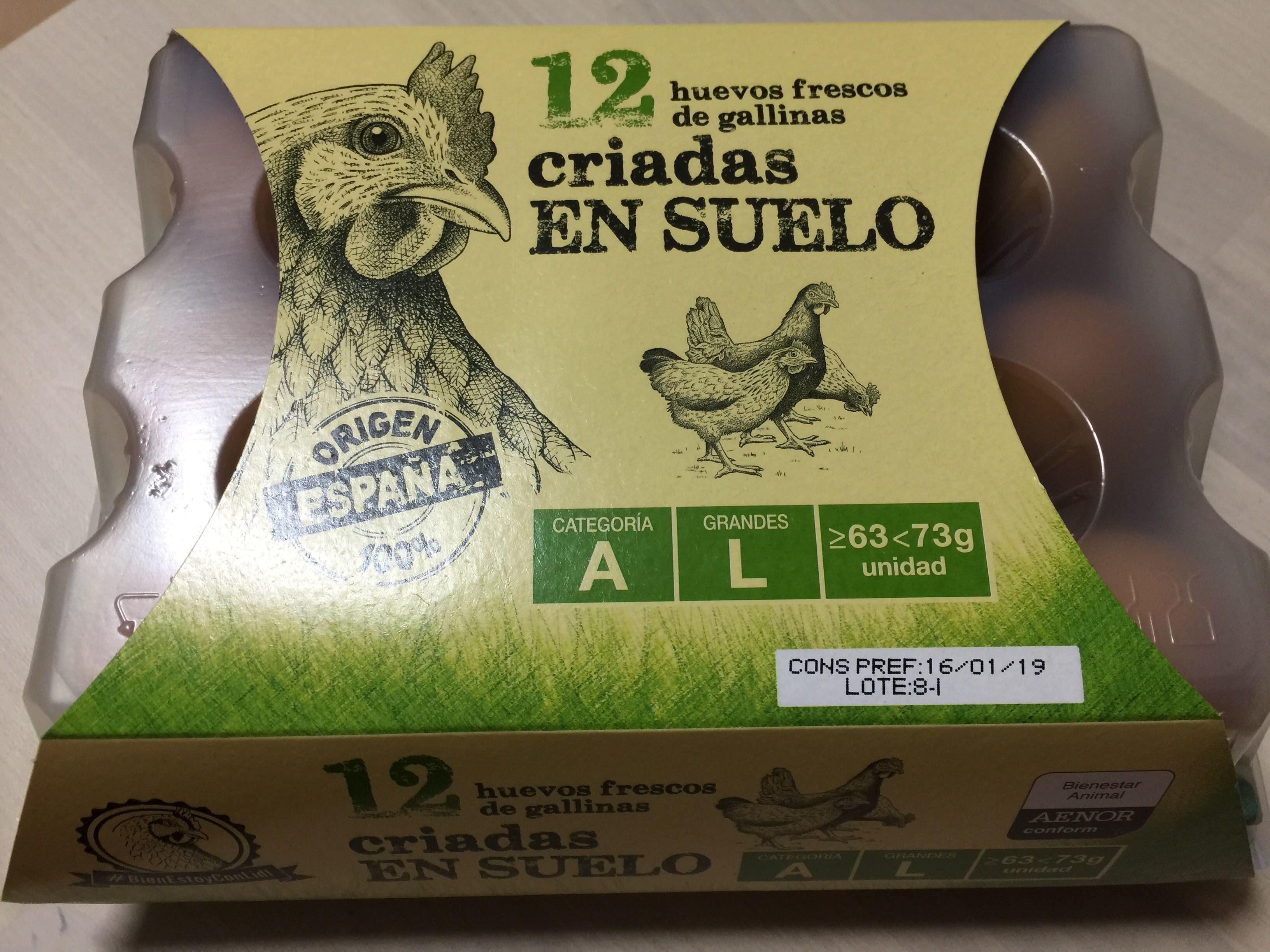 Huevos frescos de gallinas criadas en suelo - Producte - es