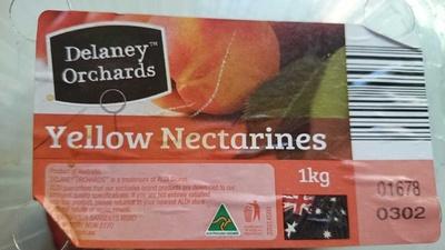 Yellow Nectarines - Product - en