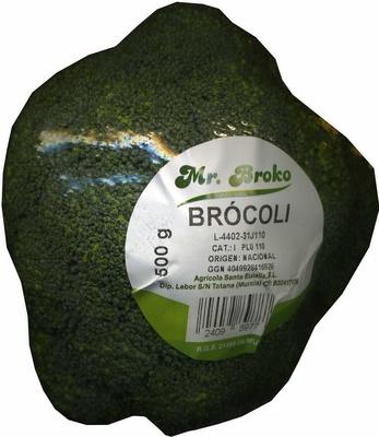 """Brócoli """"Mr. Broko"""" - Producto"""