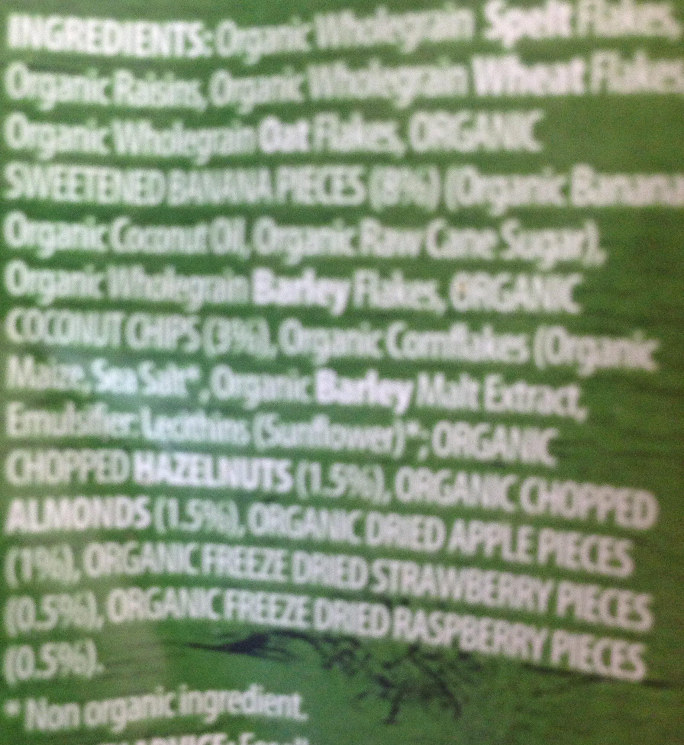 Muesli Fruit & Nut - Ingredients - en