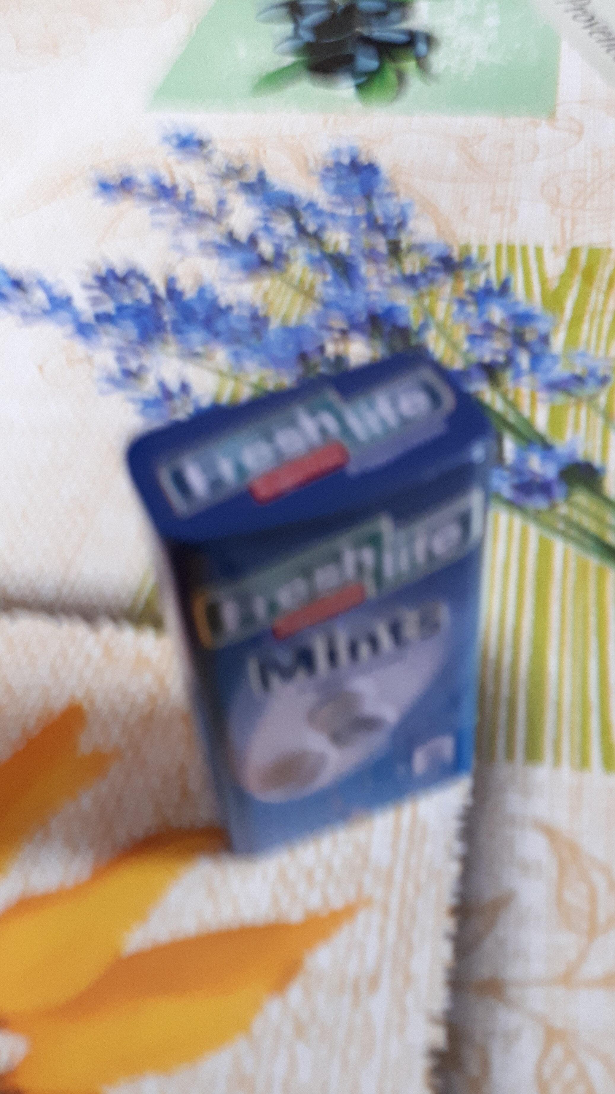 Mints peppermint - Product - fr