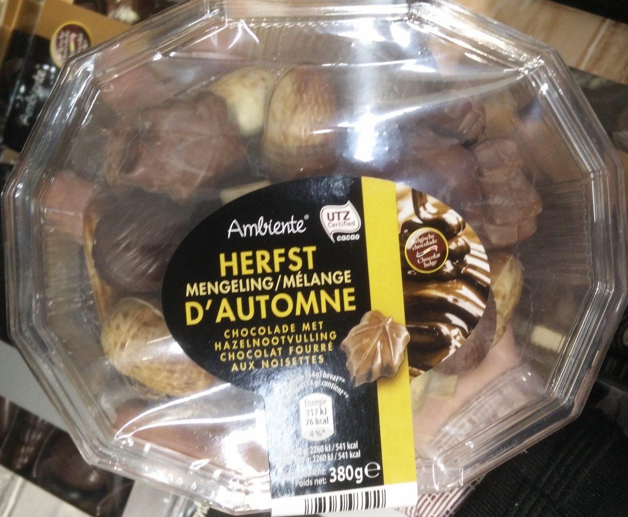 Chocolat fourré aux noisettes - Product