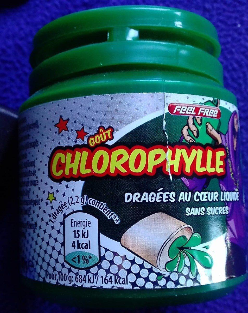 Chewing-gum eucalyptus et menthol - Produit - fr
