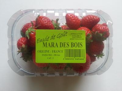 Mara des bois - Produit - fr