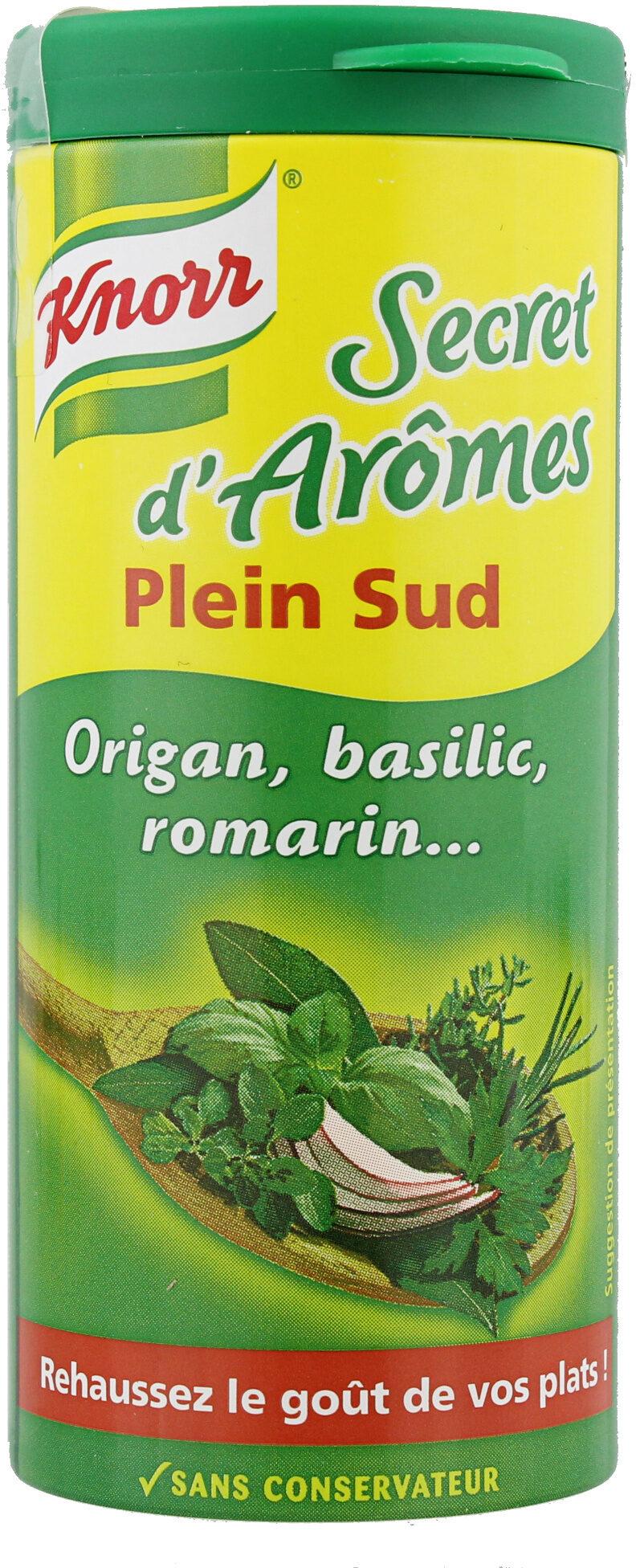 Knorr Secrets d'Arômes Assaisonnement En Poudre Plein Sud Tube 60g - Product - fr