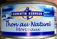 Thon au naturel Morceaux - Produit - fr