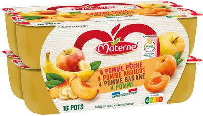 MATERNE Pomme/Pomme Abricot/Pomme Banane/Pomme Pêche 16x100g - Produit - fr