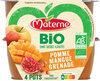 MATERNE BIO SSA Pomme Mangue Grenade - Produit