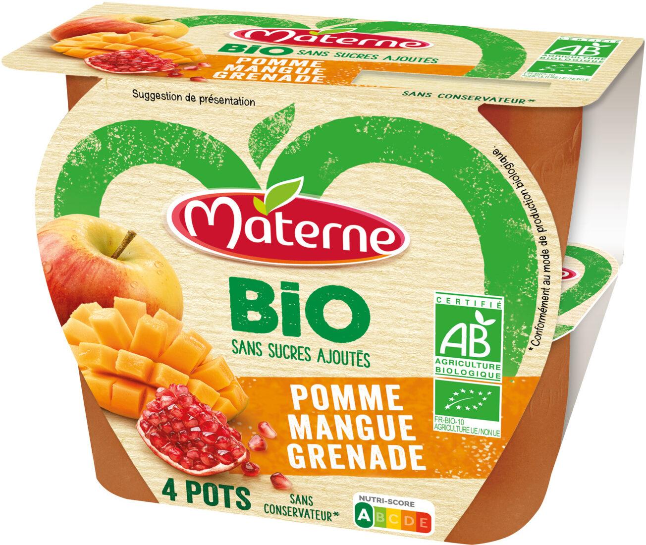 MATERNE BIO SSA Pomme Mangue Grenade 4x100g - Produit - fr