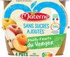 MATERNE SSA Multi Fruits du Verger - Produit