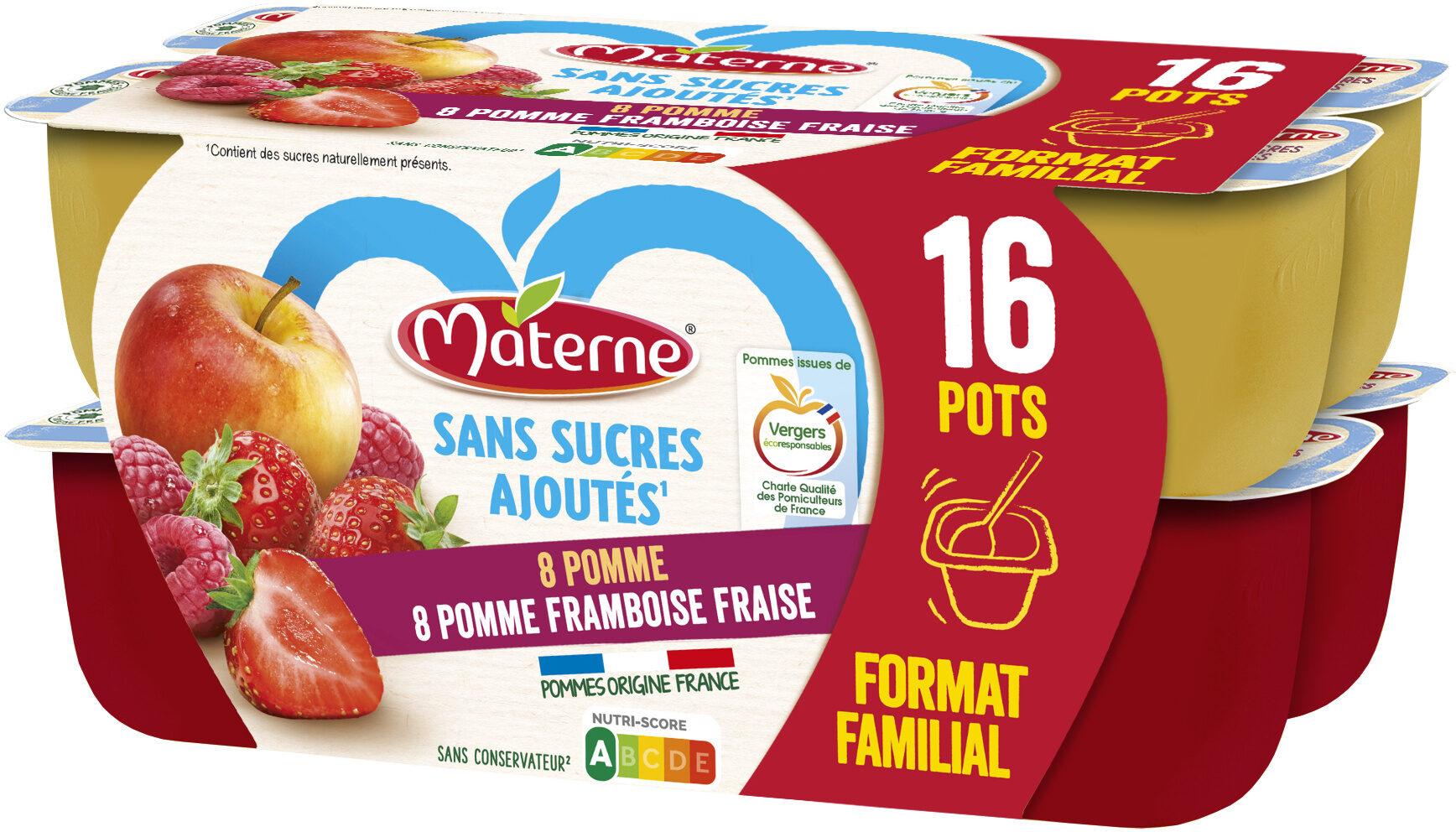 MATERNE SSA Pomme/Pomme Framboise Fraise 16x100g Format Familial - Produit - fr