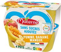 SSA Pomme Banane Mangue - Produit - fr