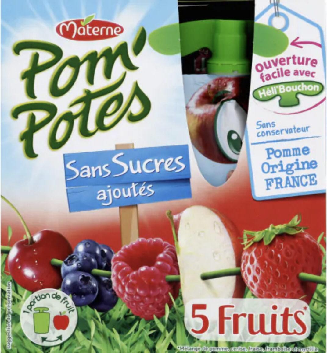 Pom'Potes 5 fruits sans sucres ajoutés - Prodotto - fr