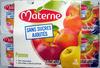 Pomme nature sans sucres ajoutés Materne - Produit