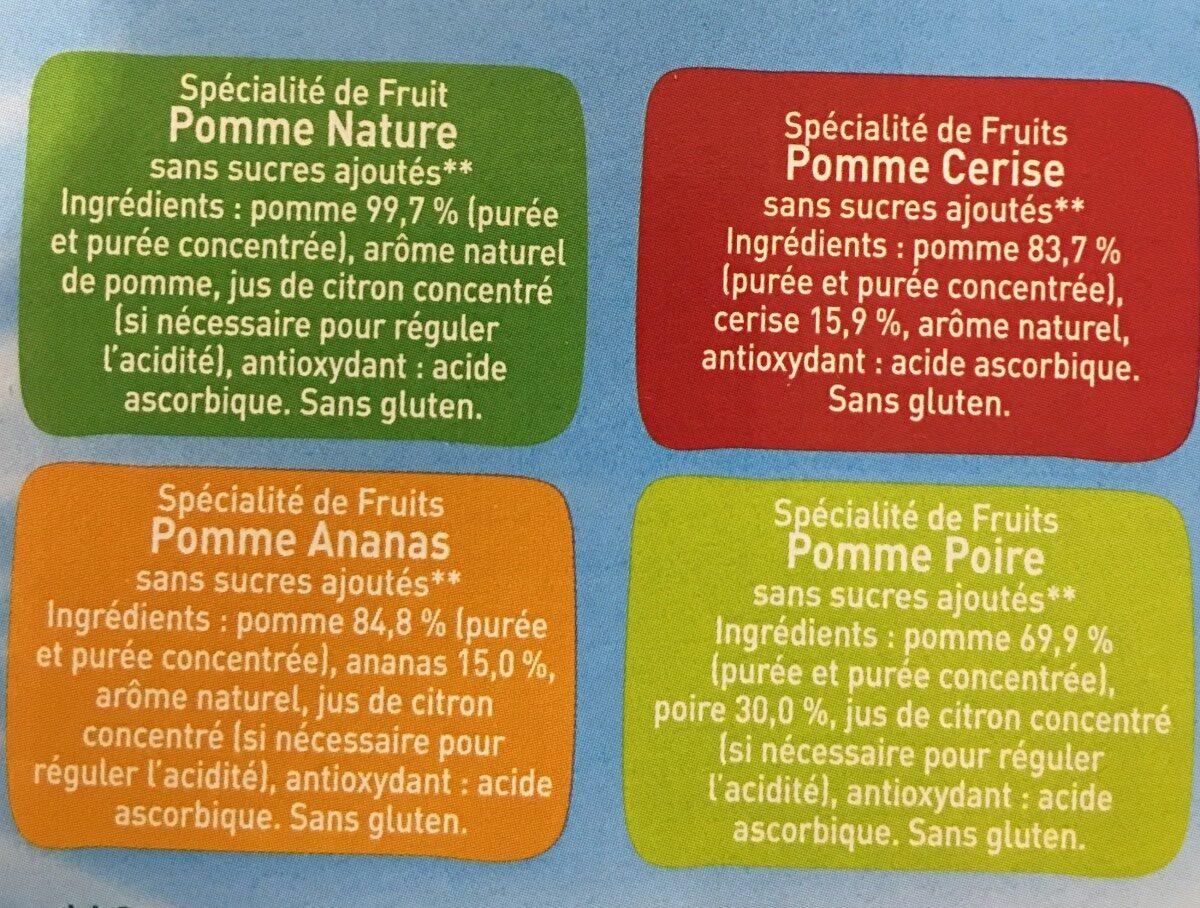 Pom'potes sans sucres ajoutés (format familial) - Ingrédients - fr