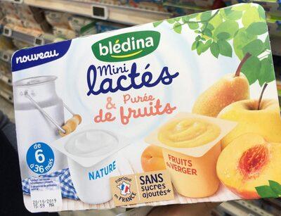 Mini lactés et purée de fruits - Product - fr