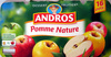 Dessert Fruitier® Pomme Nature (16 pots) 1,6 kg - Andros - Product